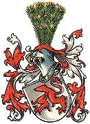 Arms of Teutonic Knight, Johann KUHMANN 1572.
